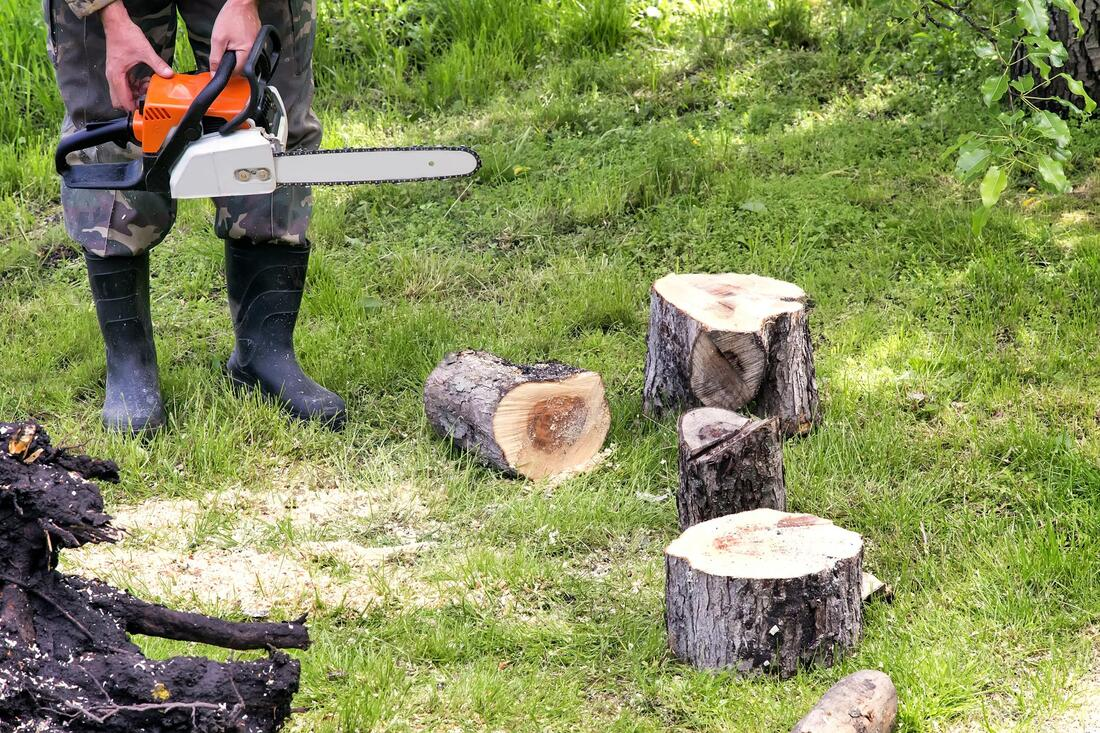Tree Service-Frisco TX Professional Landscapers & Outdoor Living Designs-We offer Landscape Design, Outdoor Patios & Pergolas, Outdoor Living Spaces, Stonescapes, Residential & Commercial Landscaping, Irrigation Installation & Repairs, Drainage Systems, Landscape Lighting, Outdoor Living Spaces, Tree Service, Lawn Service, and more.